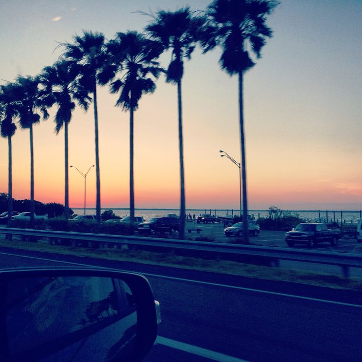 clearwater beach, Florida, highway, suncoast, sunshinestate, palmtrees, ocean