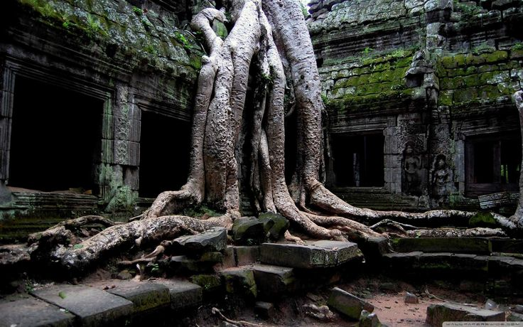 """GET DIRECTIONS   """"When you see the Temples of Siem Reap – everyone has their favorite - but for me, Ta Prohm took my breath away....""""  This temple is a photographer's dream and was used in the movie Lara Croft Tomb Raider along with"""
