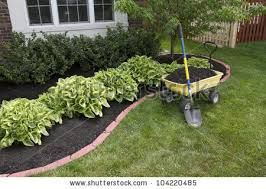 Flower beds around house low maintenance shrubs hosta for Low maintenance border shrubs