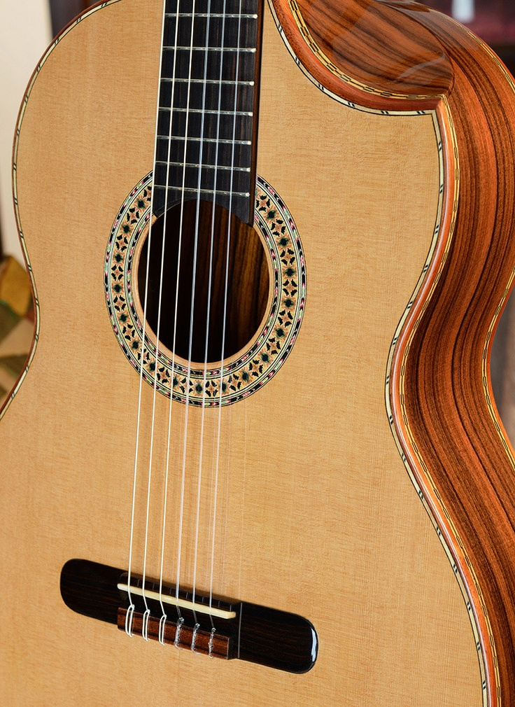 47 best images about Guitar on Pinterest | Moonflower, Luna ...