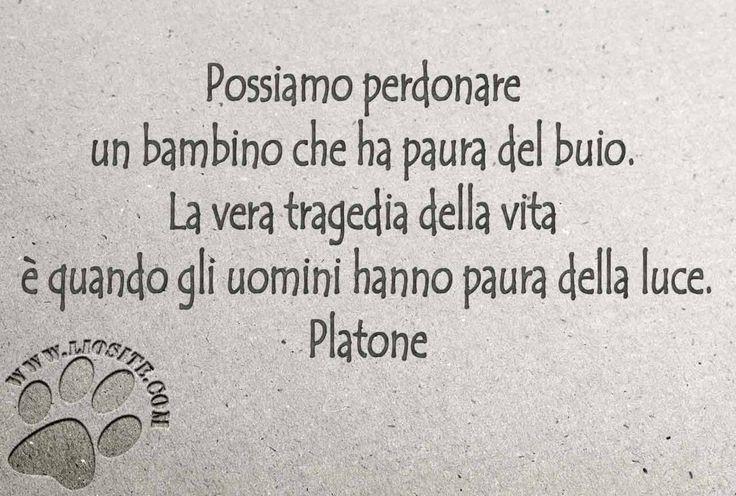 """Una ennesima occasione per rendere omaggio alla saggezza degli antichi, che ancora oggi illumina la via.  """"Possiamo perdonare un bambino che ha paura del buio.  La vera tragedia della vita è quando gli uomini hanno paura della luce.""""  Platone  #platone, #fotocitazioni, #saggezza,"""