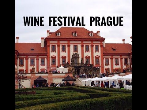 Check out our time at a Wine Festival in Prague called Trojske Vinobrani 2017. We drank all the unique Czech wine: Burcak!