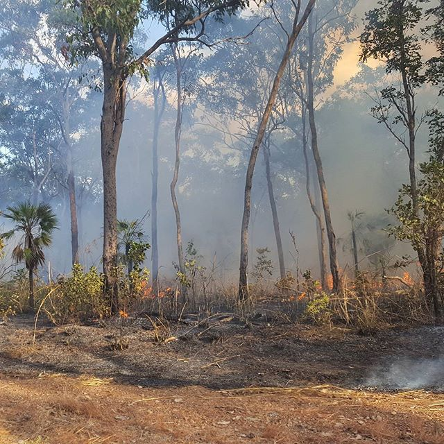 Burning season in Kakadu at the end of the wet season   Inspiring travel photos of Australia   See Something New
