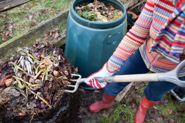 Organic gardening is a difficult task, mainly because 100% natural fertilizers are so hard to come by. The few completely natural ones that do exist are super pricey, and we have no way of knowing exactly what makes up the fertilizers that we use. Luckily, there is an alternative: creating homemade organic fertilizers that can …