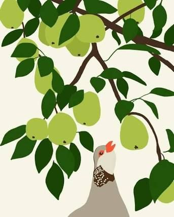 partridge in a pear tree clipart - Google Search