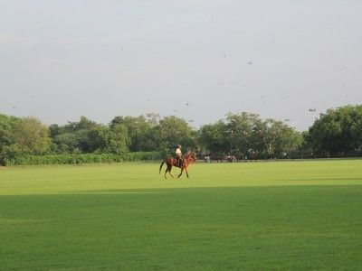 On the Polo Grounds at Jaipur Polo Club, Rajasthan, India