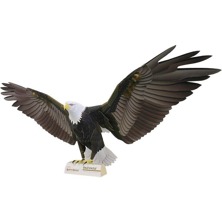 Weisskopfseeadler,Tiere,Papiermodelle,Amerika,USA,Adler,Vögel,Tiere,Papiermodelle,Falke,Vogel,Greifvögel
