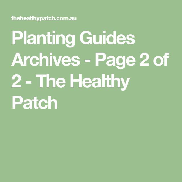 Planting Guides Archives - Page 2 of 2 - The Healthy Patch