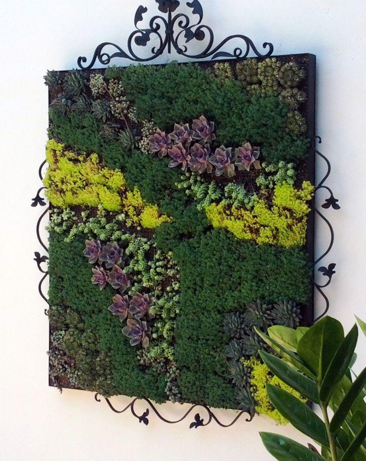 28 best Living Wall Art images on Pinterest Gutter garden Green