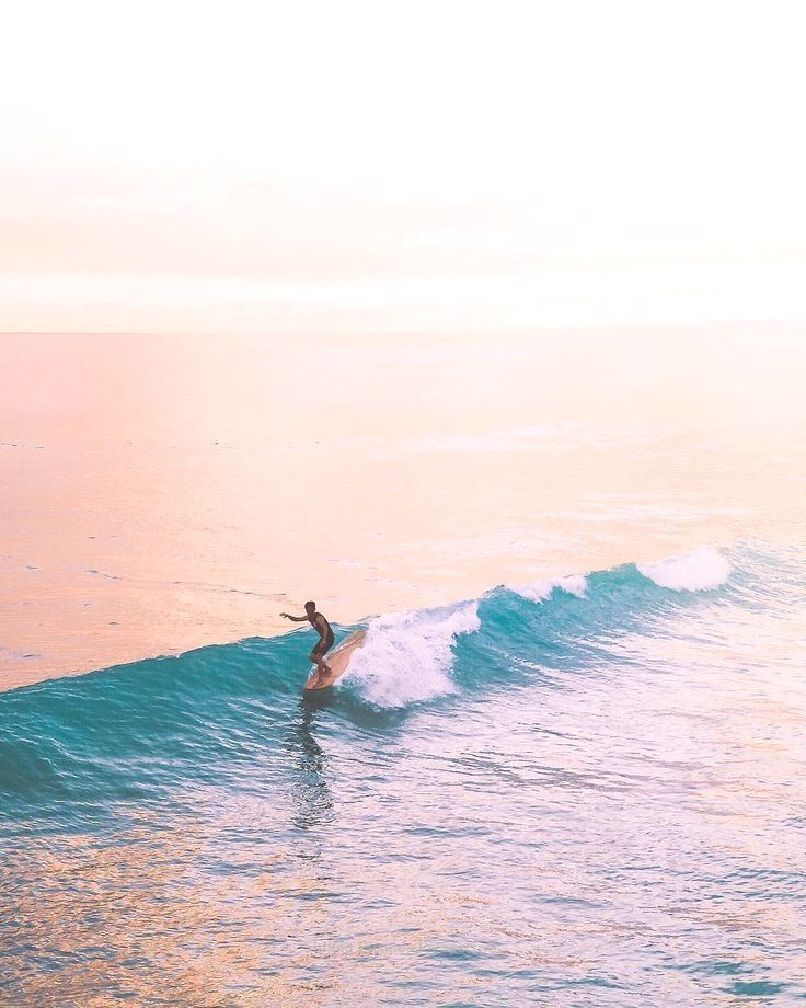 Turtle Bay Surf Report