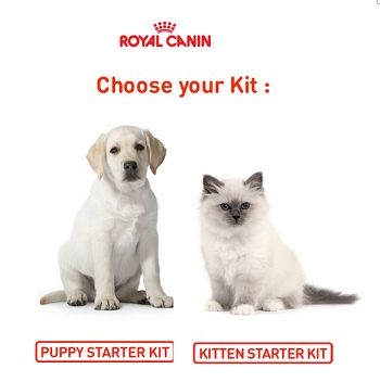 expired samples freebies free royale canin puppy kitten starter kits