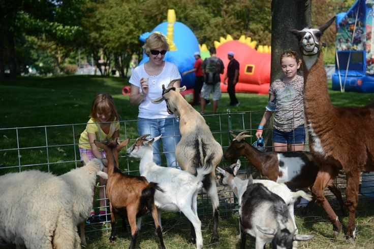 Petting Zoo! Pony rides, Pot belly pigs, Zoo animals