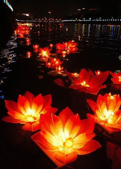 floating lotus lanterns... pretty for a wedding or celebration - 6 lanterns for 20 dollars isn't bad!