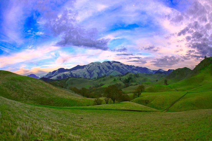 Yuppp. This is where I grew up. Mt Diable, Danville CA <3