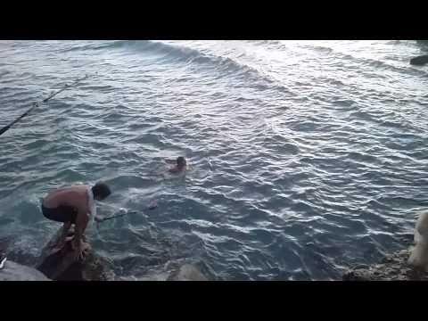 """Desconocemos el motivo pero el que caso es que un hombre en Florida, se ha echado al agua y con tan sólo un hilo con cebo ha conseguido """"cazar"""" con sus propias manos lo que aparentemente es un tiburón punta negra de 1.5 metros."""
