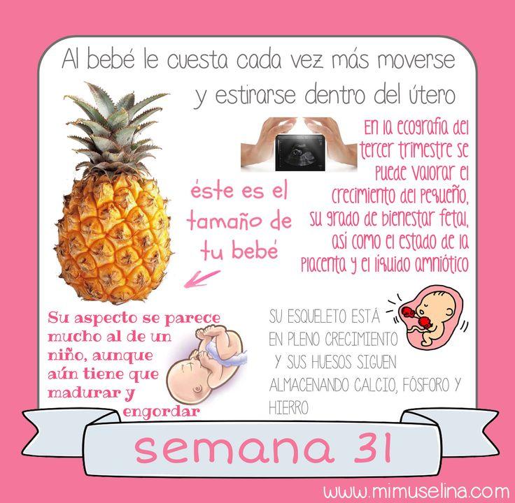 BebeBlog de una mama primeriza donde recomiendo mis 10 Must have list, sobre bebés, crianza, maternidad, lactancia, alimentación, compras