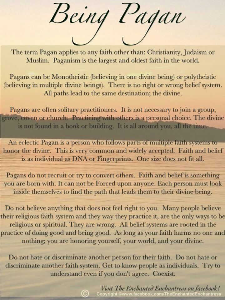 This is absolutely beautiful. It quite accurately sums up my beliefs, and I think, per this summation, I could probably consider myself an Ecclectic Pagan.   I will say that I don't know how accurate the statement is that suggests that any belief other than Christianity, Judaism, or Islam would fall under the category of Paganism.