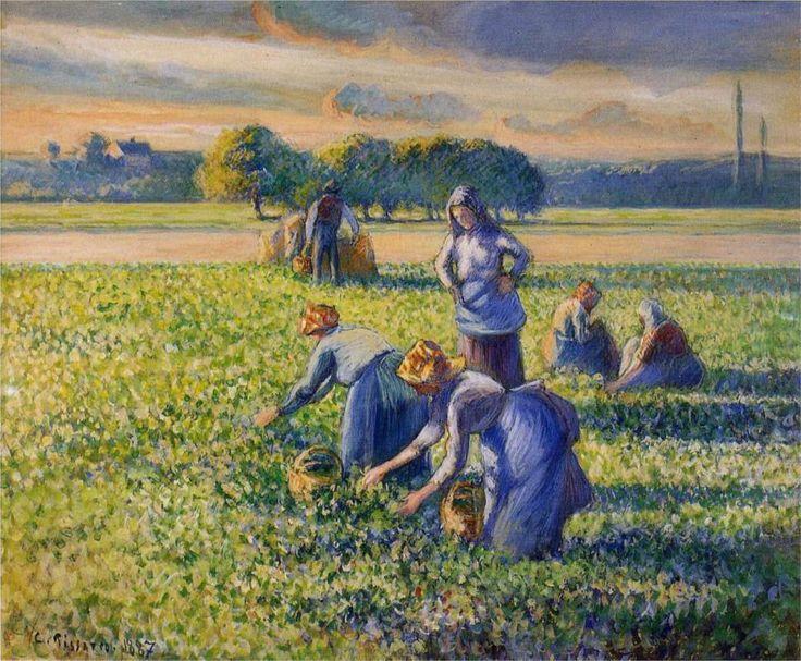 Picking Peas, 1887 -   Camille Pissarro - Style - Pointillism