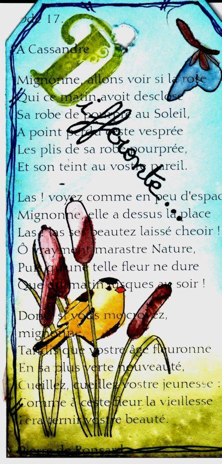 lettre D - Différente