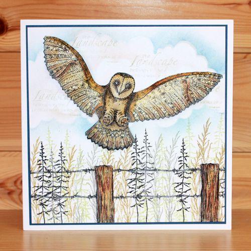 Orla Owl – Anna   Hobby Art