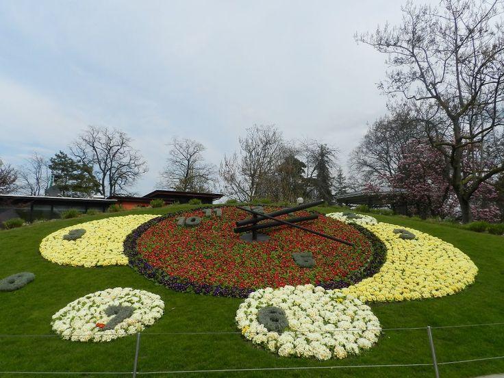 Reloj Floral Ginebra-Fotografía: Lilian