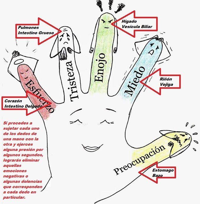 Todas Las Recetas Jin Shin Jyutsu Técnica Japonesa Para Equilibrar Massage Therapy Mudras Therapy