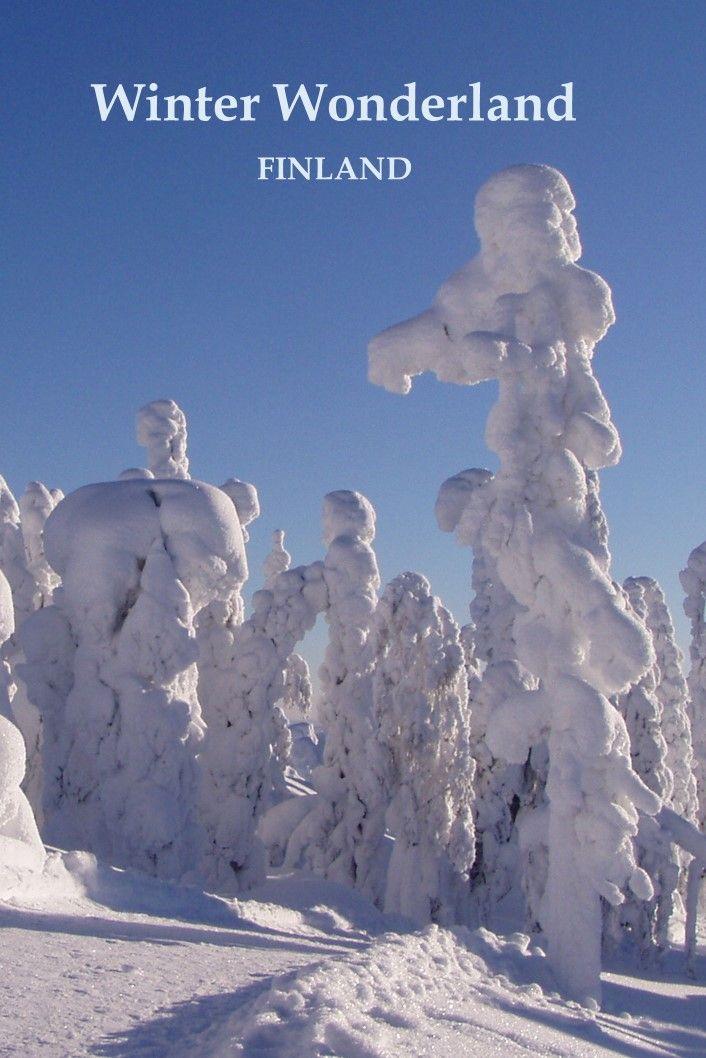 Koli National Park, Finland (winter)