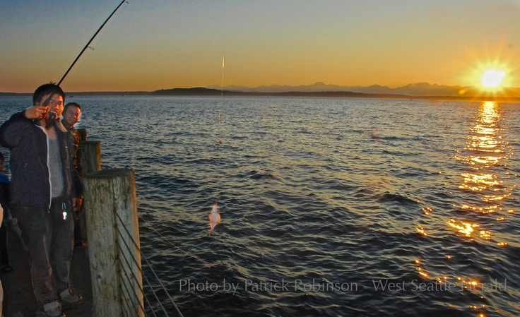 A young man catches a tiny fish at sunset in West Seattle. Photo by Patrick RobinsonFavorite Places, West Seattle, Tiny Fish, Man Catching, Young Man, Patricks Robinson