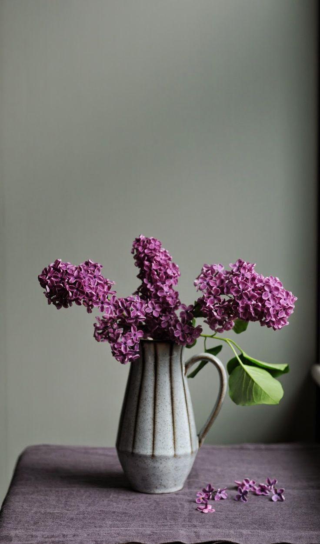 Lilac Still Life Study - by dawn mead
