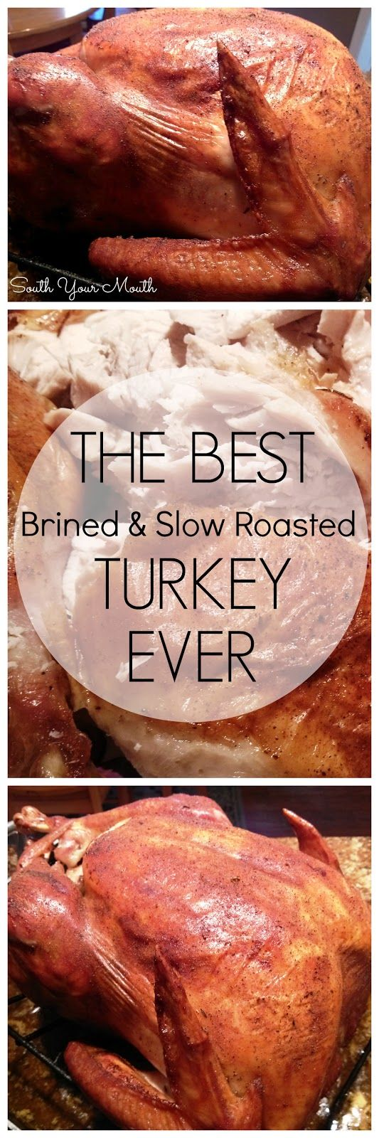 South Your Mouth: Jive Turkey - Brined & Herbed Slow-Roasted Turkey with Prefect Turkey Gravy