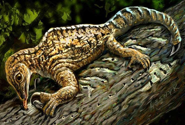 """An article published in the journal """"Current Biology"""" describes the study of fossils of Drepanosaurus unguicaudatus, a reptile that lived in the Triassic period, about 212 million years ago. The discovery complete fossils of this animal in New Mexico allowed to carry out detailed exams which confirmed that it had very strong forelimbs with a huge claw and an anatomic conformation definitely out of the normal that surprised the paleontologists. Read the details in the article!"""