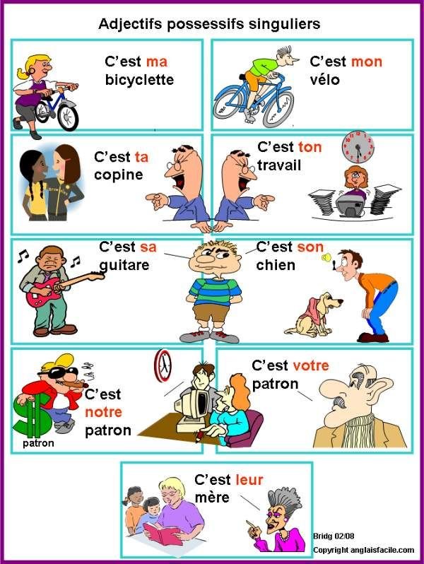Adjectifs possessifs singulier