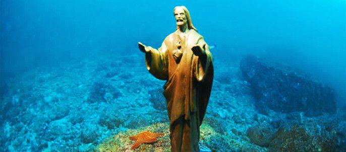 El Rey de Reyes, snorkel trip at Las Gatas beach