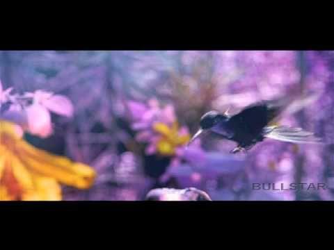 OM HARI OM by Patrick Bernard [HD-BS]