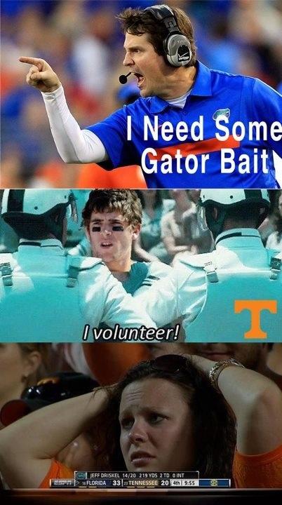 Gator Bait Volunteer by Alexander Scott Davis, University of Florida