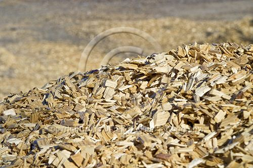 Radiata Pine (pinus radiata) woodchip from the Caboolture saw mill, owned and operated by CHH Wood Products in Queensland, Australia. For image licensing enquiries, please feel welcome to contact me at derekwalker73@bigpond.com  Cheers :)