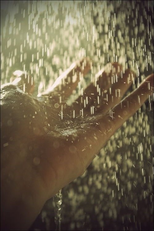 """""""Rain"""" ..a miraculous way of washing the dirt that covers the earth.. moistness empties the thirst of all the plants and trees. without you Oh! rain our energy will drain..  Shelter My Growth..."""