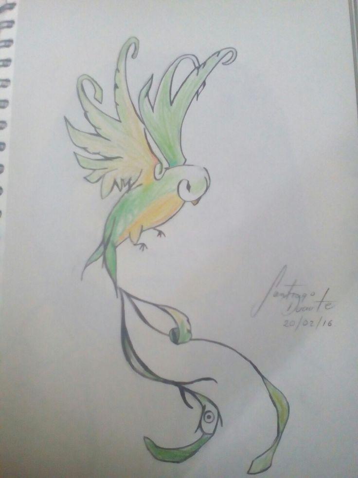 Pájaro color