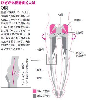 O脚、X脚を治して、脚長、小尻になる ゆがみリセット学(6)|ヘルスUP|NIKKEI STYLE