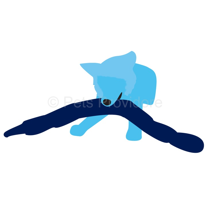 Invincible Snake     Your dog loves squeaking toys but keeps puncturing them with his sharp teeth? Kyjen's Snakes keep on squeaking after being punctured    If you want to get more bang (squeak) for your buck, buy a longer-lasting toy!