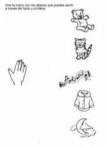 sense organs worksheet for preschool 1
