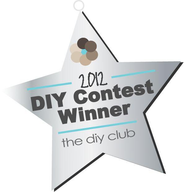 Diy Club June 2012 Winner Diy Crafts And Life Hacks