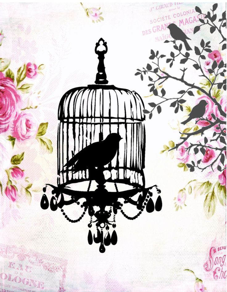 84 best imprimer cages oiseaux voli res images on pinterest bird cages silhouettes and. Black Bedroom Furniture Sets. Home Design Ideas