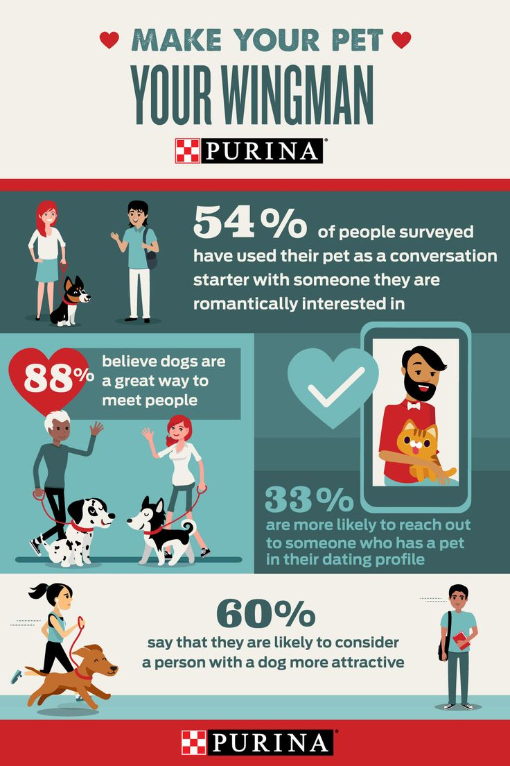 the benefits of owners and pets from the mutual relationship The correlation between personality and relationships with pets  and health benefits to 'everyday' pet owners (mcconnell, et al, 2011)  androgyny's.