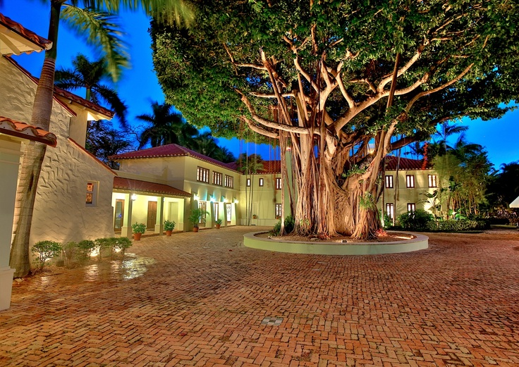 Celebrity Homes Of The Rich And Famous In Miami