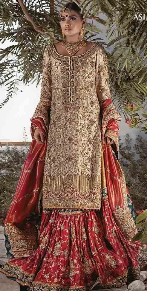 0050fa9edc Pakistani Bridal Dresses In Red And Gold Colors 2019 in 2019 | Ethnic  Fashion ❤ | Wedding dresses, Pakistani bridal dresses, Muslim wedding  dresses