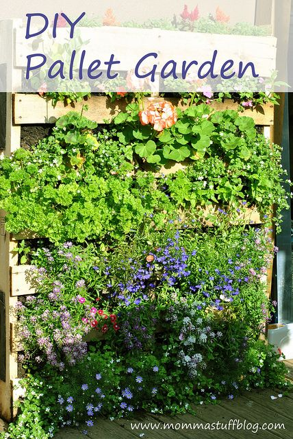 DIY Pallet Garden-- Make a Green Wall using only a pallet and Landscape Fabric via @Amber :) #cbias #outdoorDIY