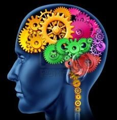 8 Habits that Improve Cognitive Function | 1. Physical Activity - 2. Openness to Experience - 3. Curiosity and Creativity - 4. Social Connections - 5. Mindfulness Meditation - 6. Brain-Training Games - 7. Get Enough Sleep - 8. Reduce Cortisol Levels
