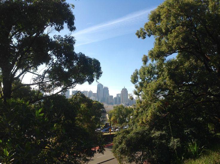 The CBD from the University of Sydney