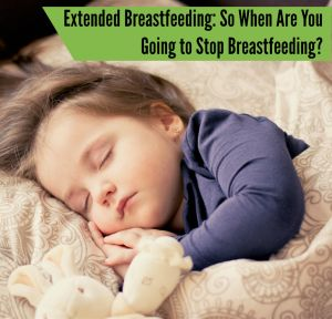 Extended Breastfeeding: So when are you going to stop breastfeeding?, nursing, extended nursing, toddler breastfeeding